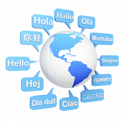 Freelance Experienced Translator